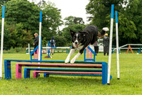 10-30-Large Agility GD 6,7 Saturday4